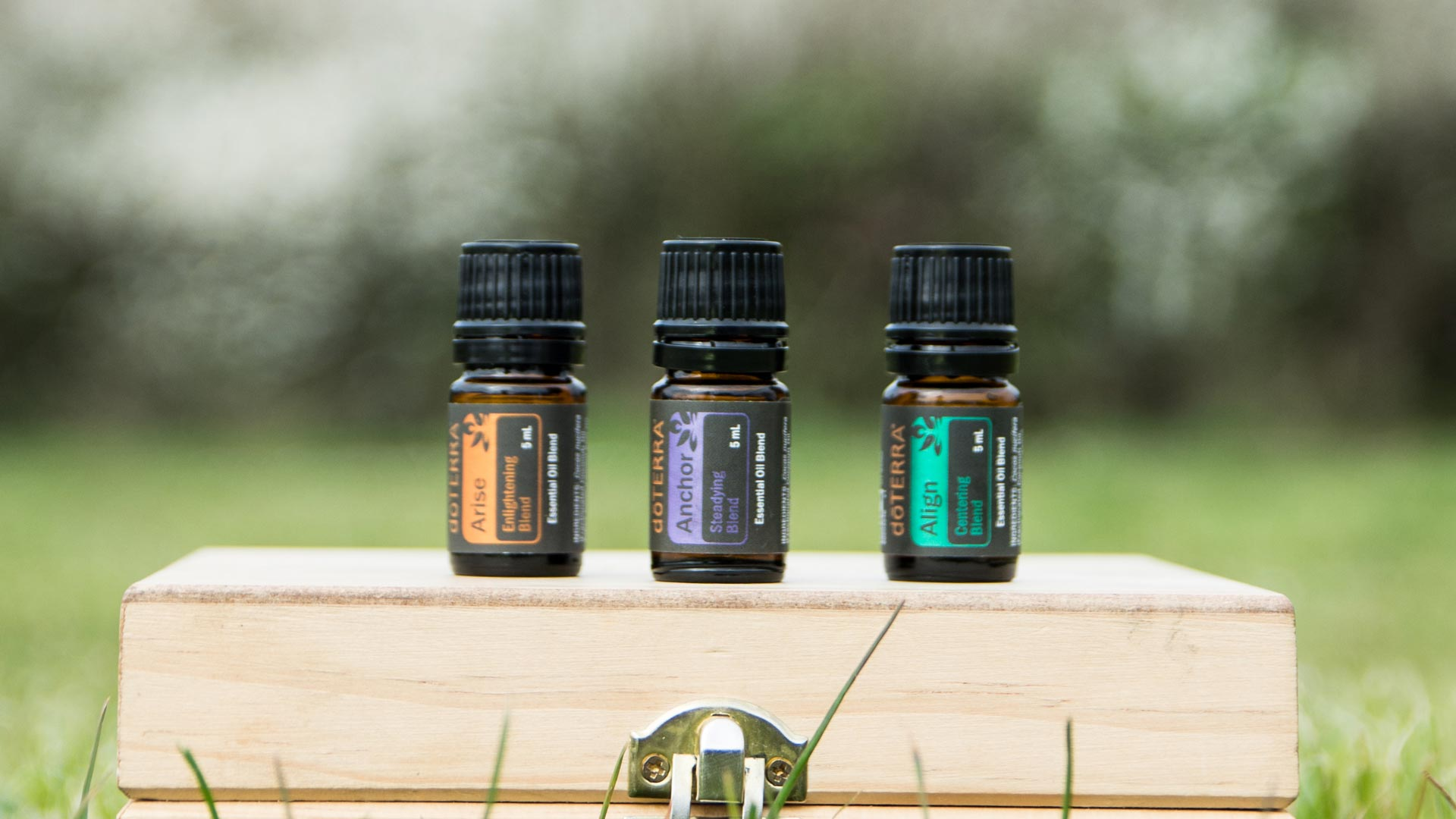 holistic therapy Essential Oils