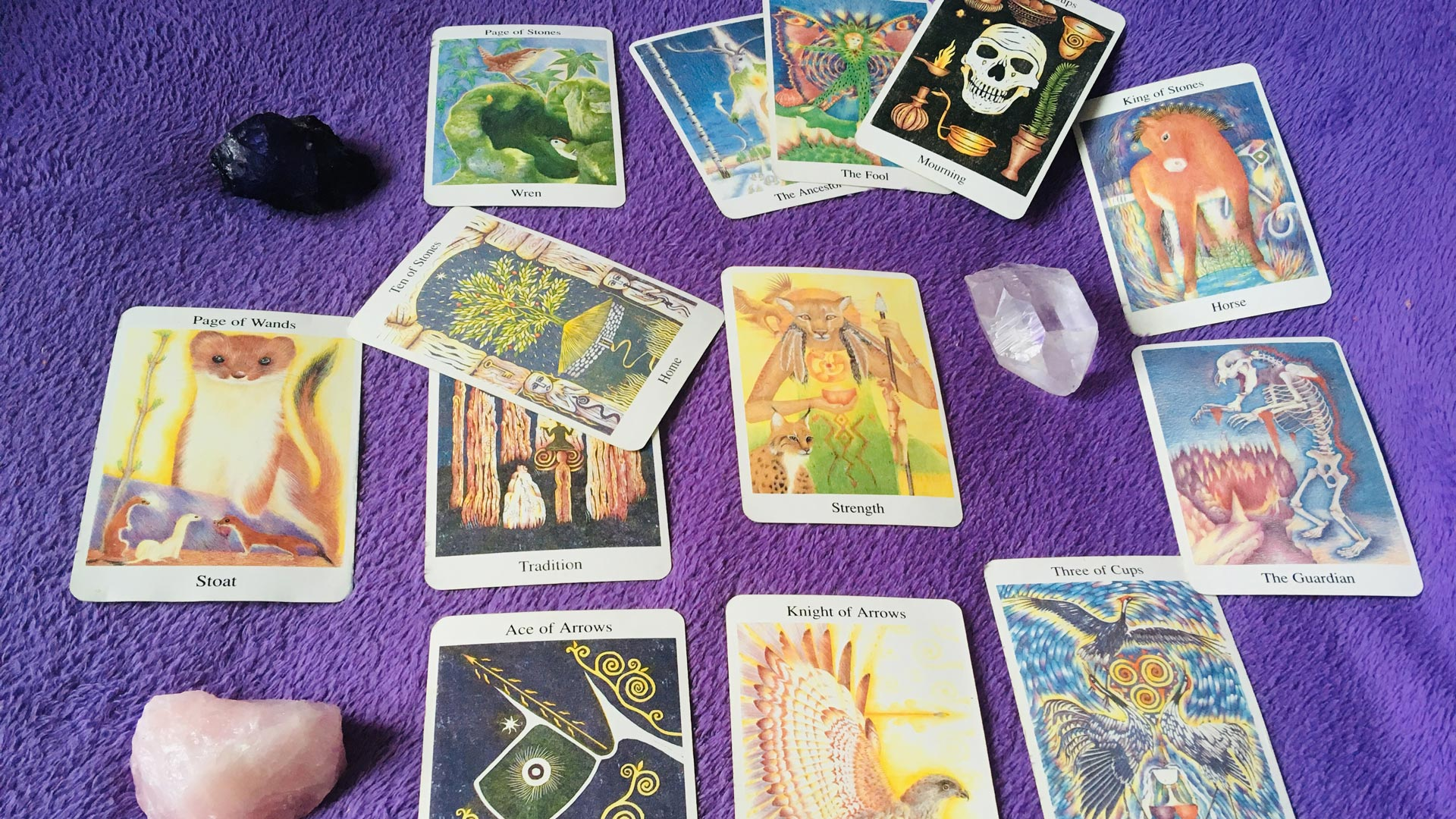 Tarot card reading being carried out
